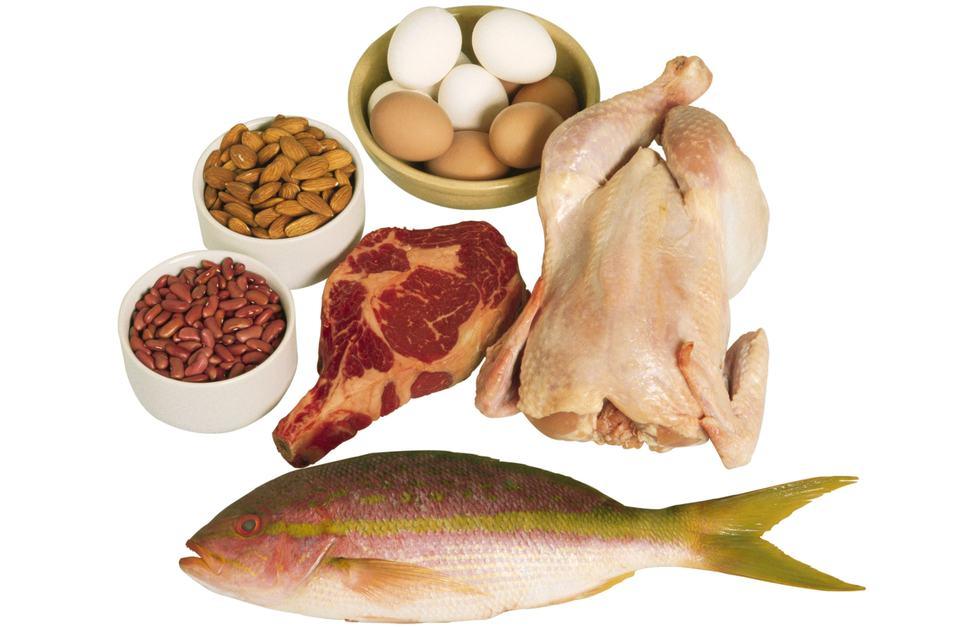 blog-Proteins